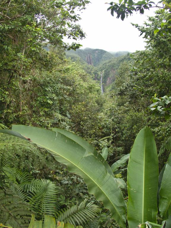 chutes du carbet en guadeloupe dans les caraibes