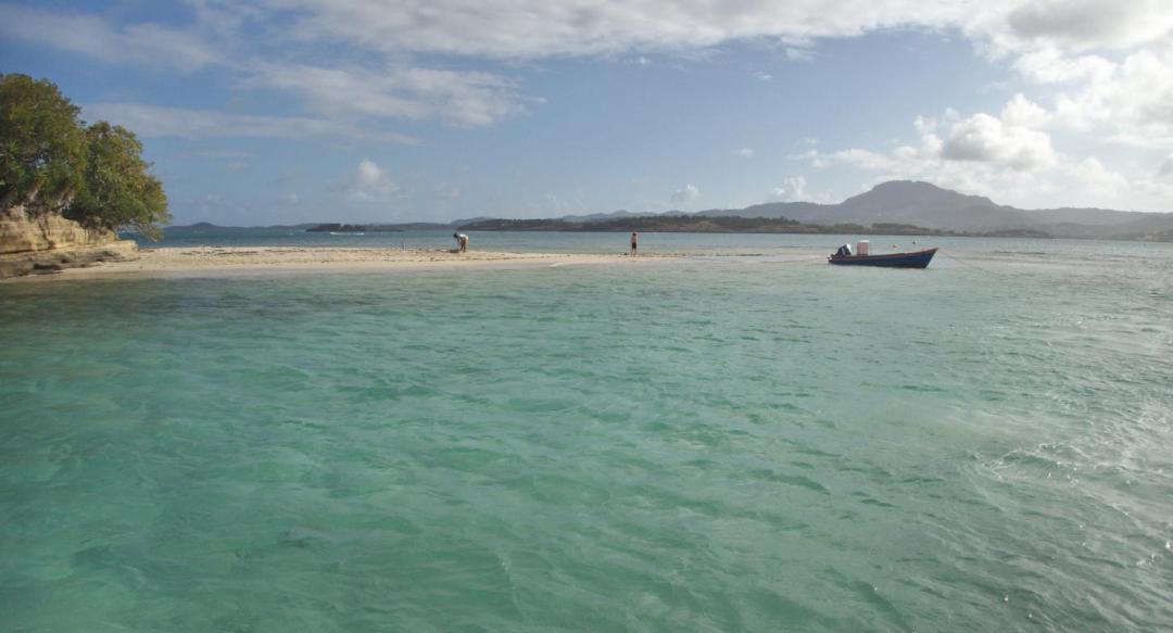 les fonds blancs martiniquais dans les Caraïbes