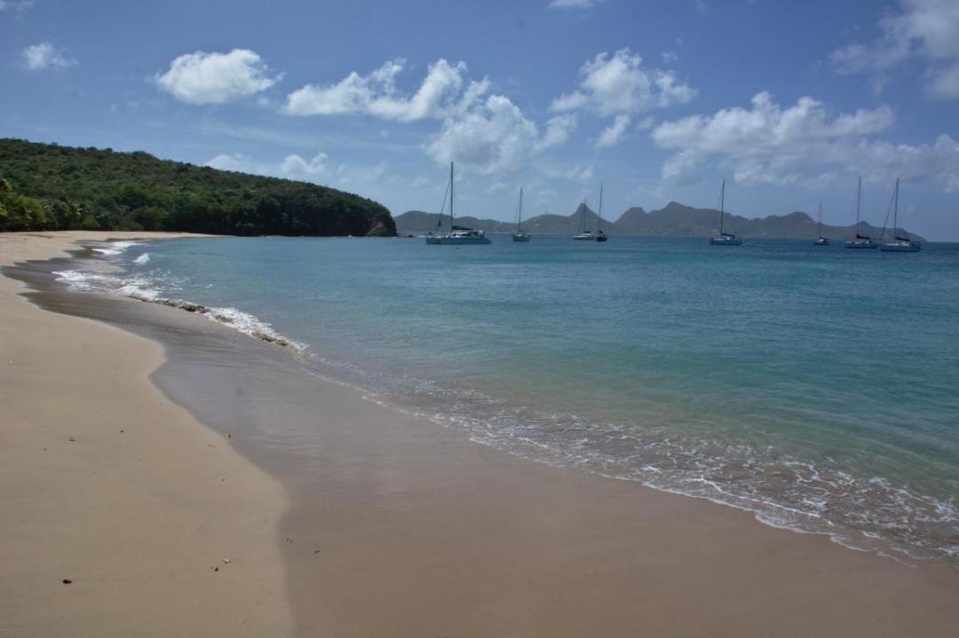 une plage des grenadines dans les caraibes