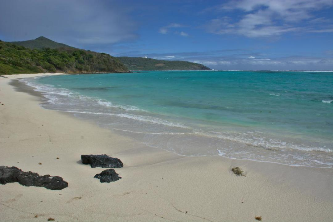 plage et eau turquoise des grenadines dans les caraibes