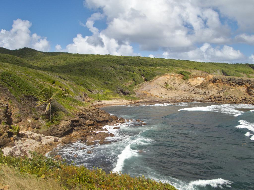 la côte sauvage de la presqu'ile de la caravelle en Martinique