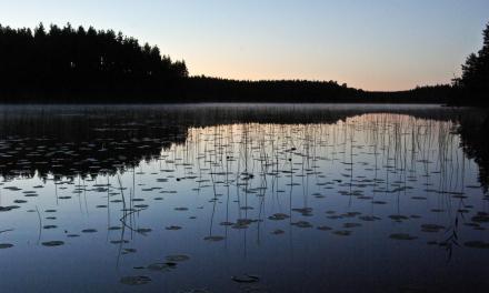 Hébergement insolite en Suède: un écolodge perdu dans la nature