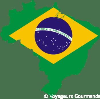 Bilan Séjour Brésil