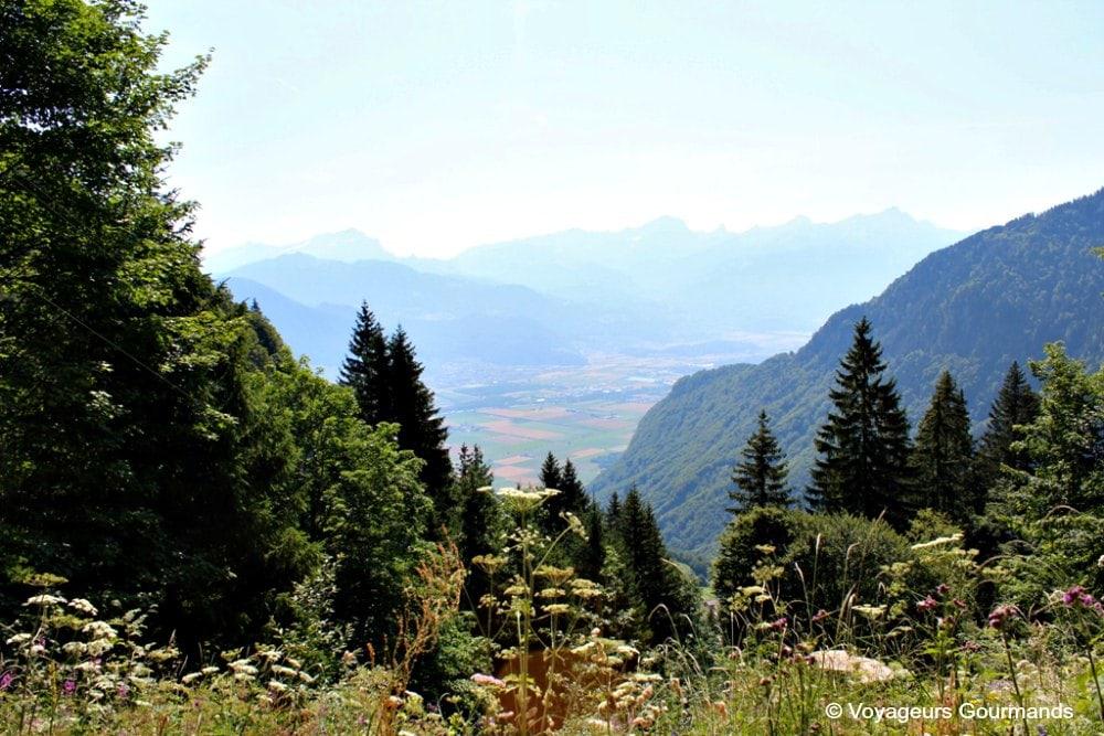 randonnee-au-lac-de-taney-4