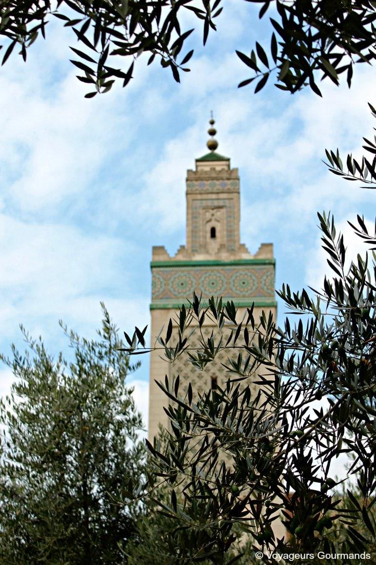 visiter la mosquée de paris