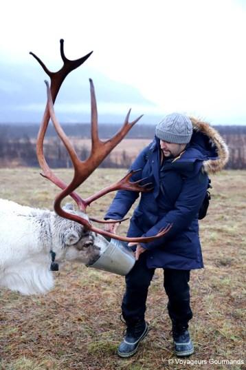 visiter tromso en hiver