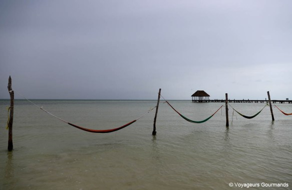 road trip dans le Yucatan (48)