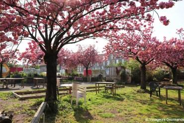 Découvrir la Métropole Européenne de Lille : de la ferme à la table