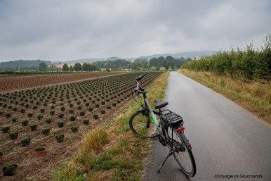 vallee de la Lys et les Monts de Flandre (36)