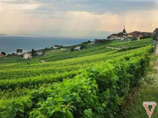 Suisse2013-37
