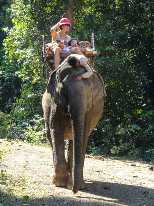 phou asa laos éléphant