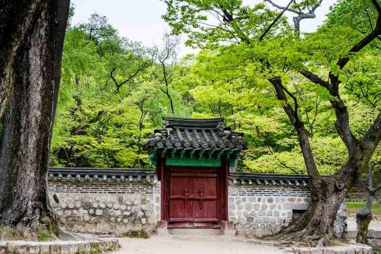 Changdeokgung jardin secret seoul