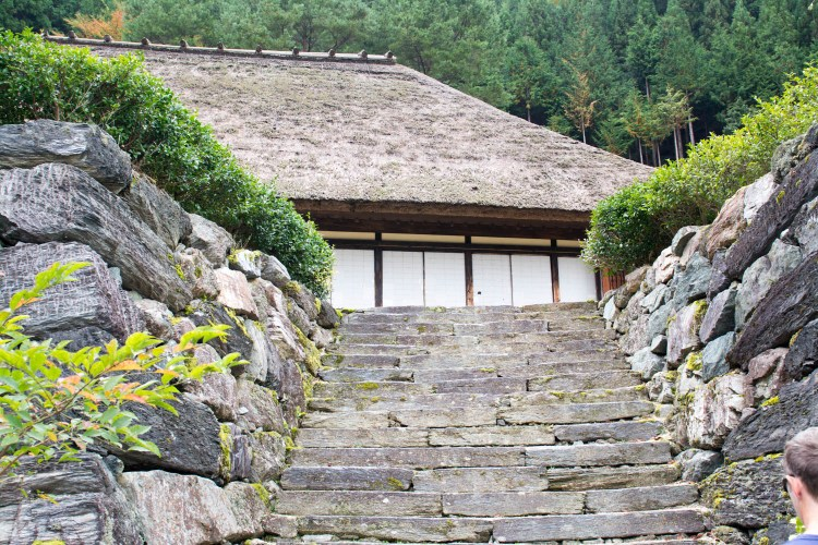 shikoku iya japon