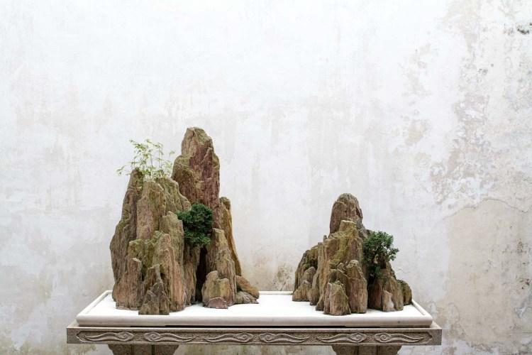 suzhou shanghai jardin