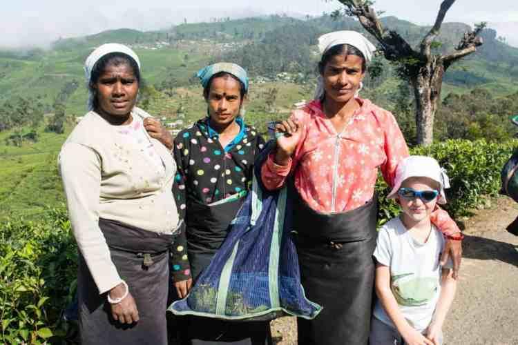 Voyager au Sri Lanka a Ella