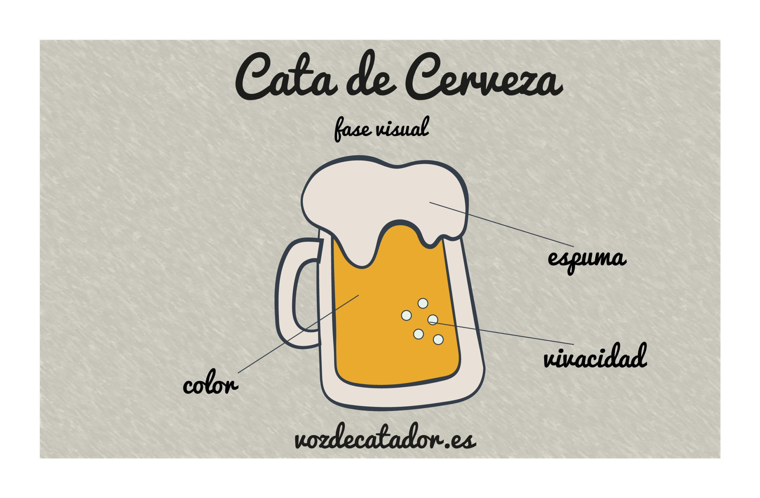 cata de cerveza vozdecatador.es