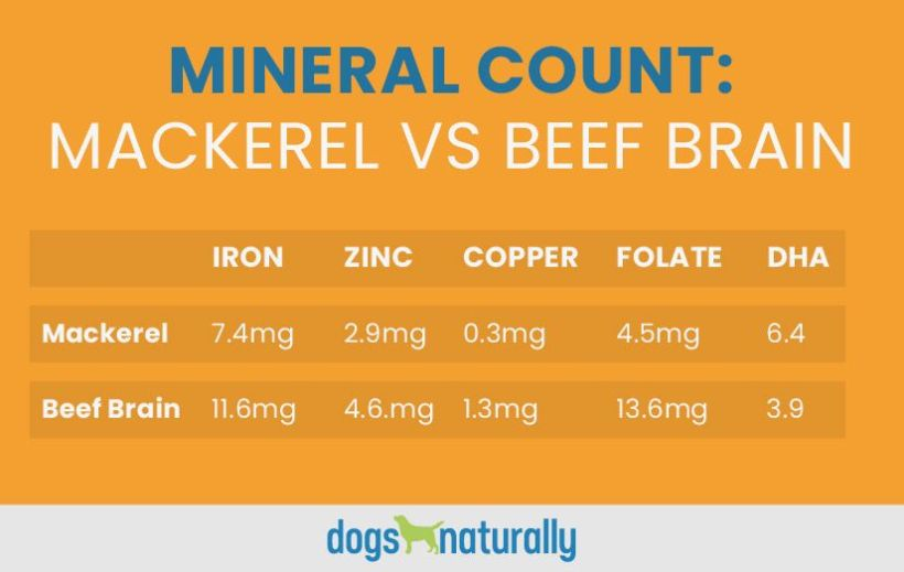 Table comparing the mineral count of Mackerel vs beef brain