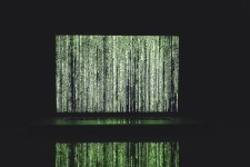 Co byste měli vědět o DDoS útocích na poskytovatele telekomunikačních služeb