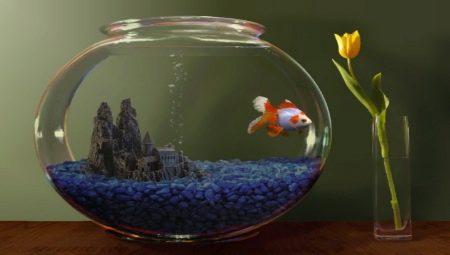 Неліктен аквариум суында тазартылады және бұл туралы не істеу керек?