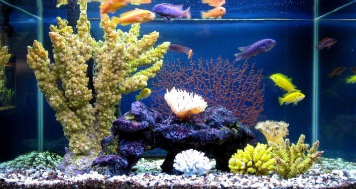 Как выбрать аквариумный грунт: виды, советы и правила grunt dlya akvariuma vidy vybor i primenenie 1 AquaDeco Shop