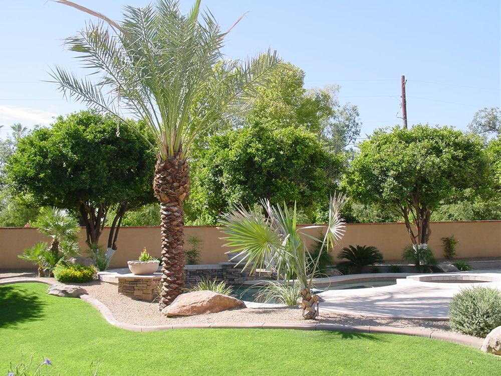 Arizona Landscaping Ideas Pictures