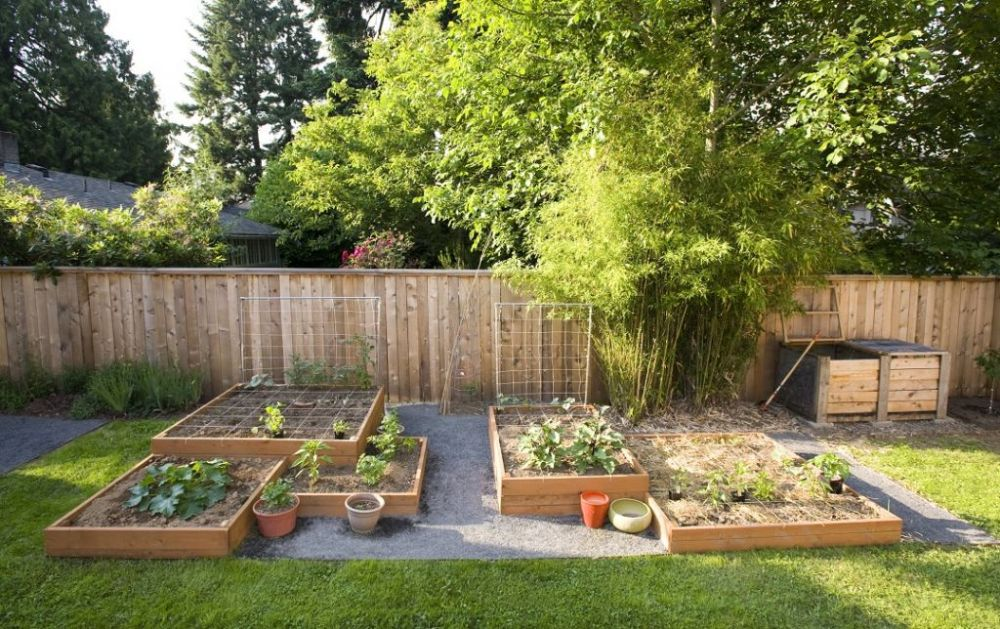 Backyard Landscape Design Ideas On A Budget