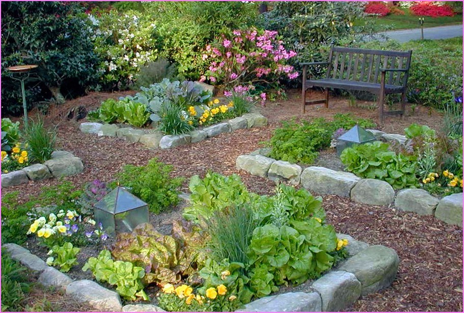 Backyard Landscaping Ideas California