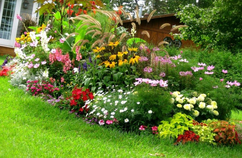 Backyard Landscaping Ideas In Texas