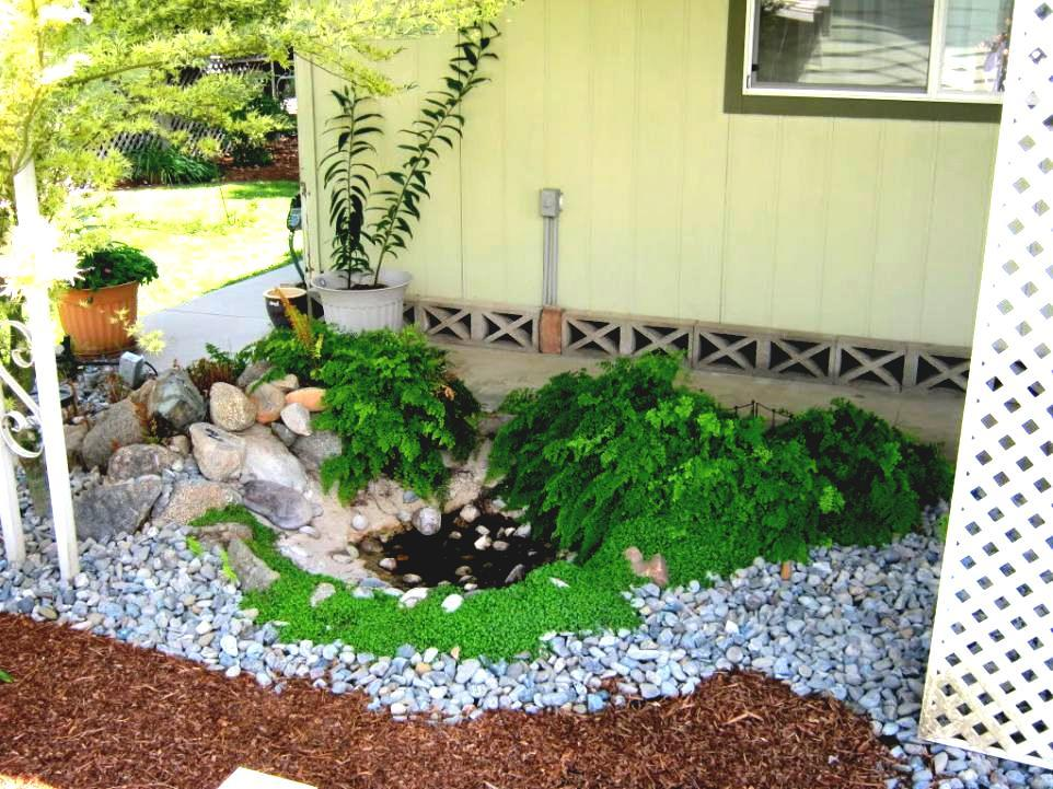 Backyard Landscaping Ideas On The Cheap