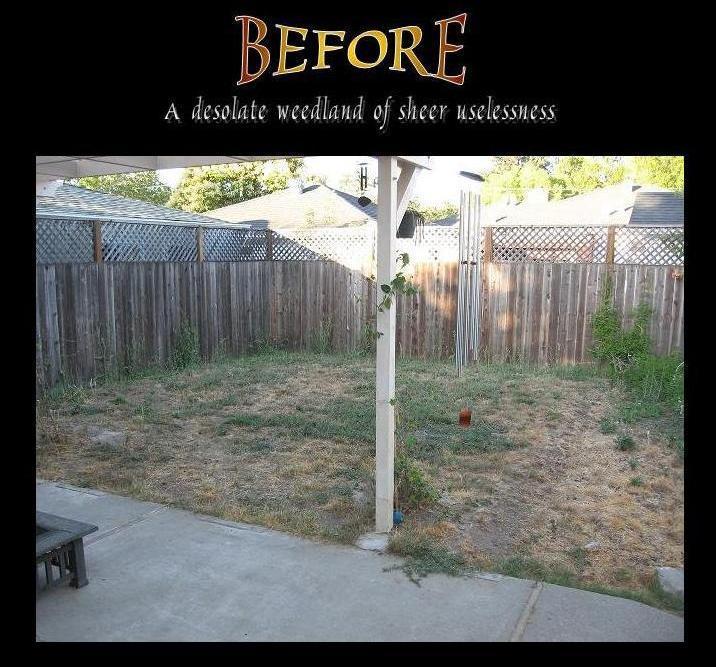 Cheap Ideas For Backyard Landscaping