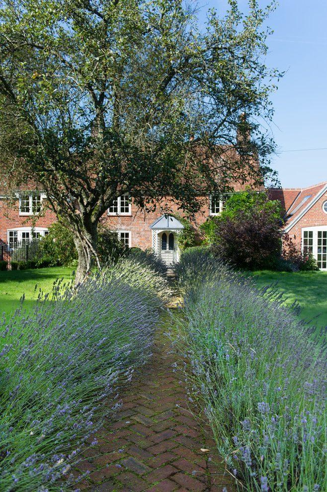 Country Cottage Landscape Ideas