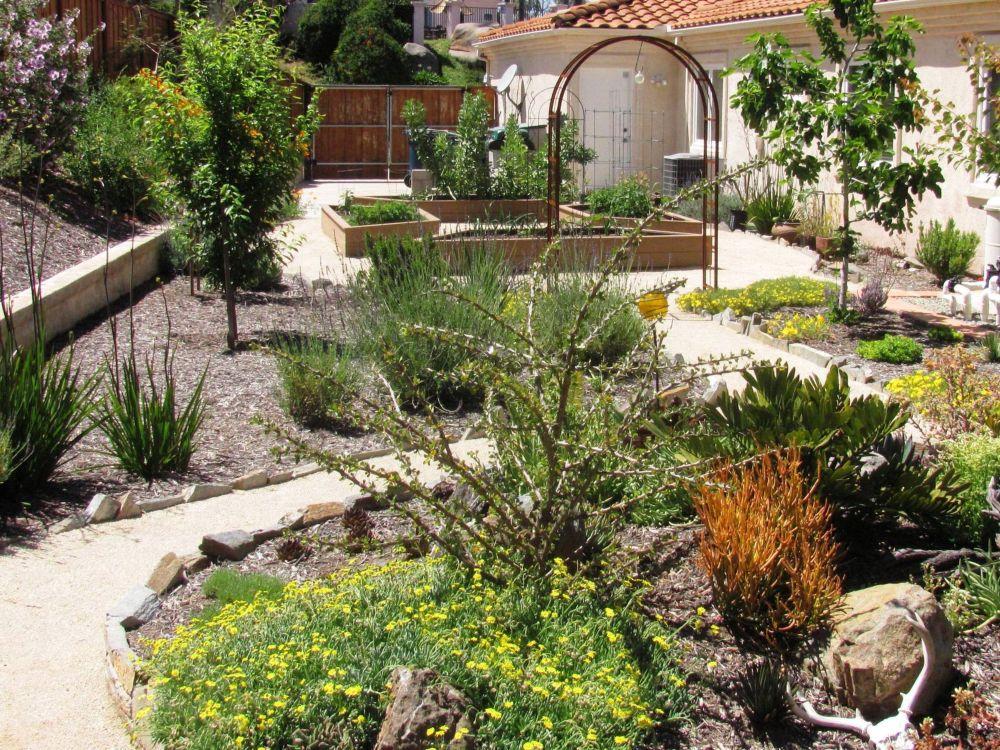 Desert Landscape Ideas And Plans