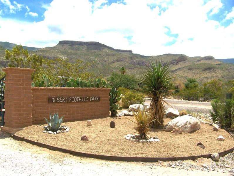 Desert Landscape Ideas For Front Yards