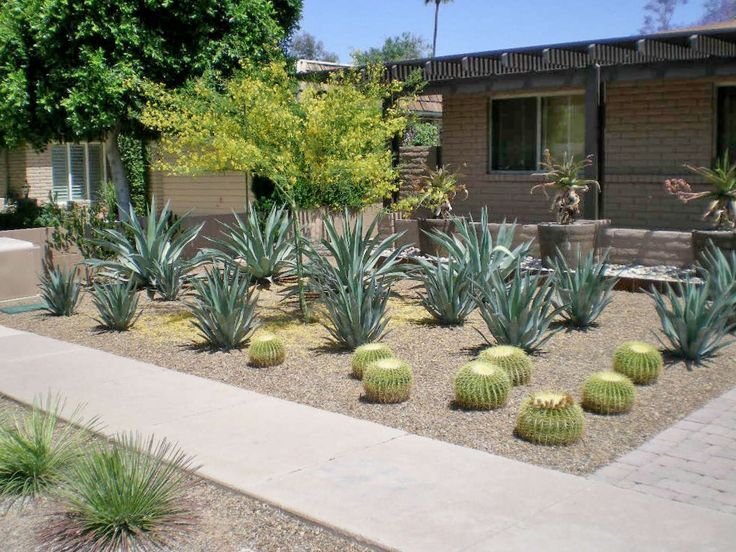 Desert Landscape Ideas Pinterest