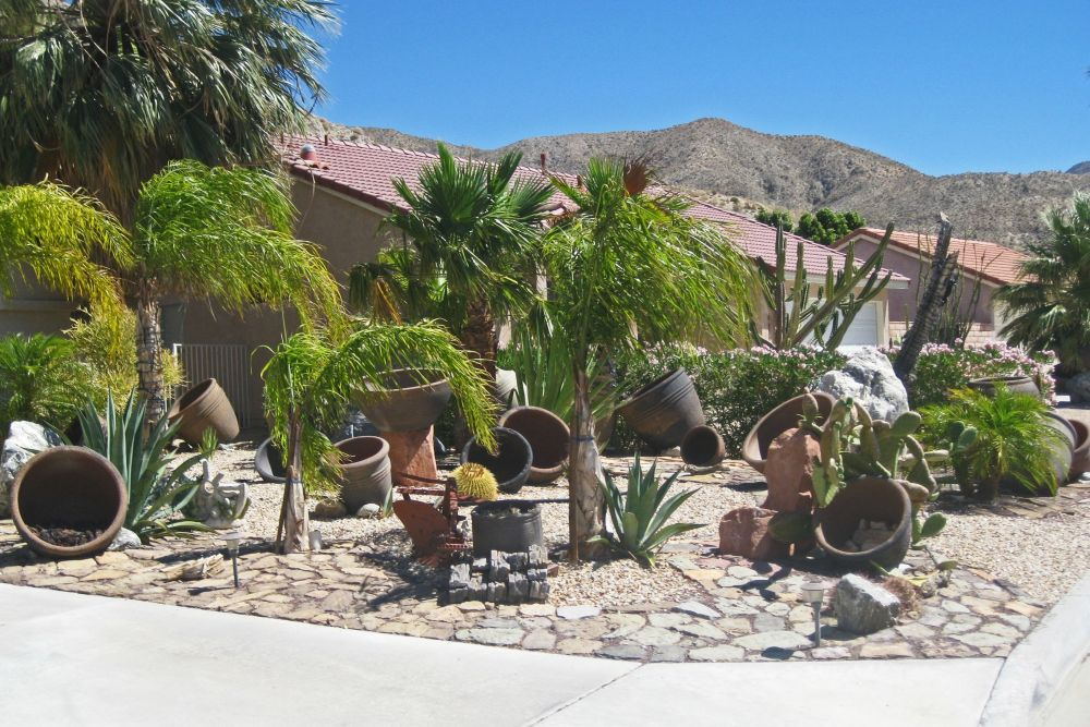 Desert Landscaping Ideas Front Yard