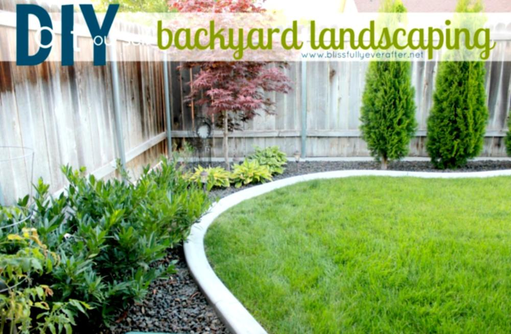 Diy Backyard Landscaping Ideas On A Budget