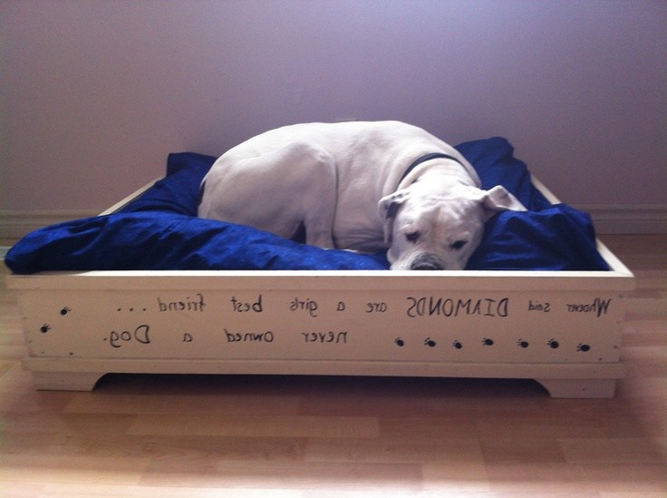 Diy Dog Bed Frame