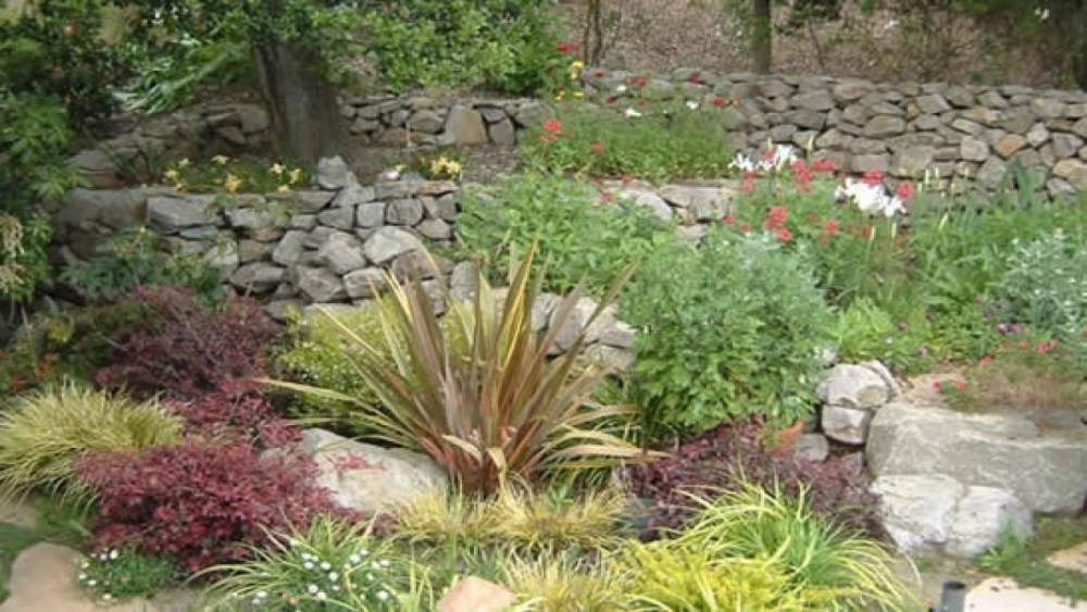 Diy Landscaping Border Ideas