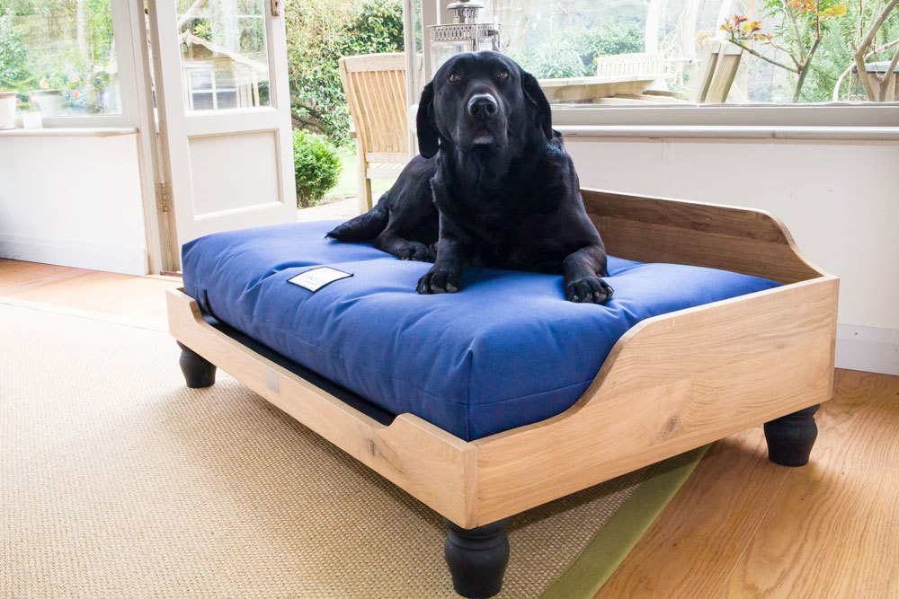 Dog Bed Frame And Mattress