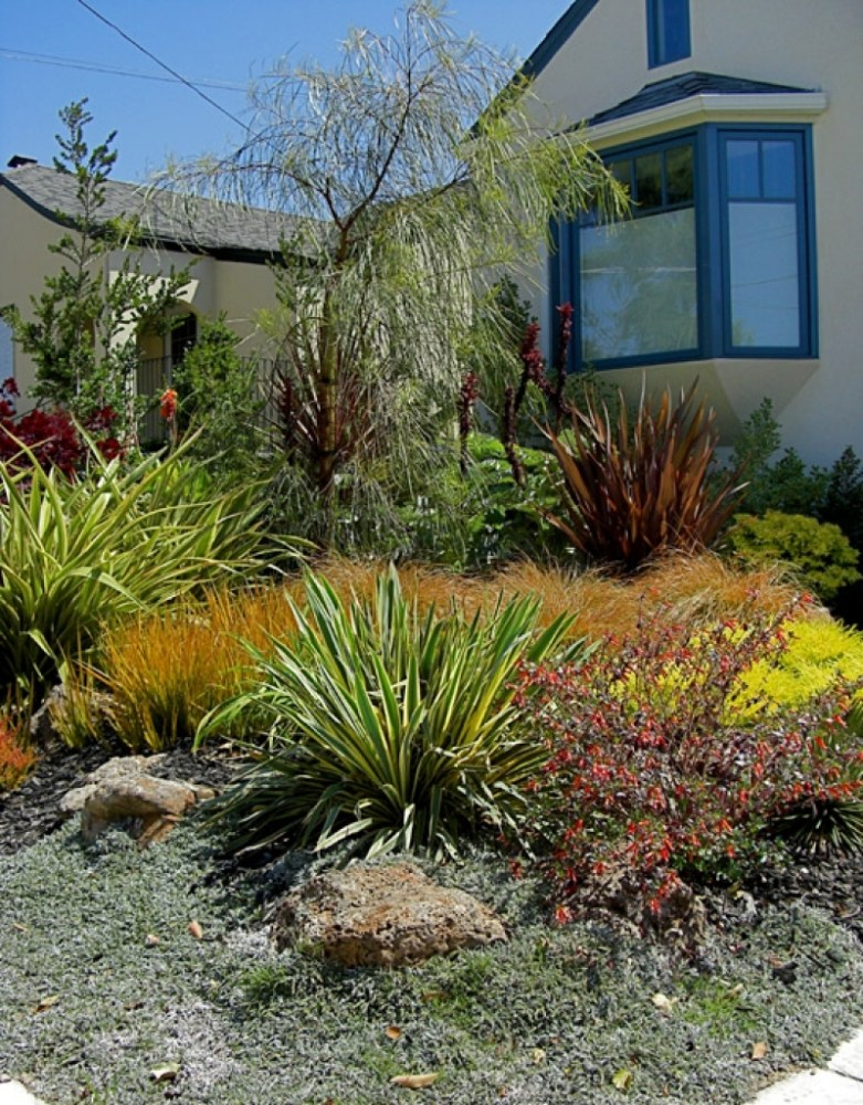 Drought Tolerant Landscape Design Photos