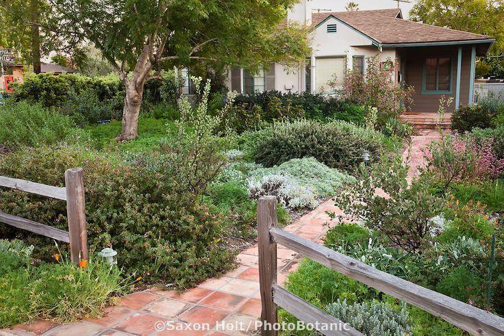 Drought Tolerant Landscaping Ideas California