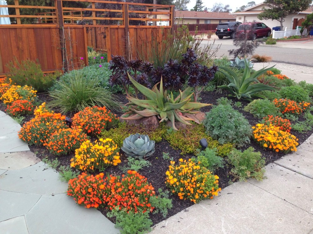 Drought Tolerant Landscaping Images