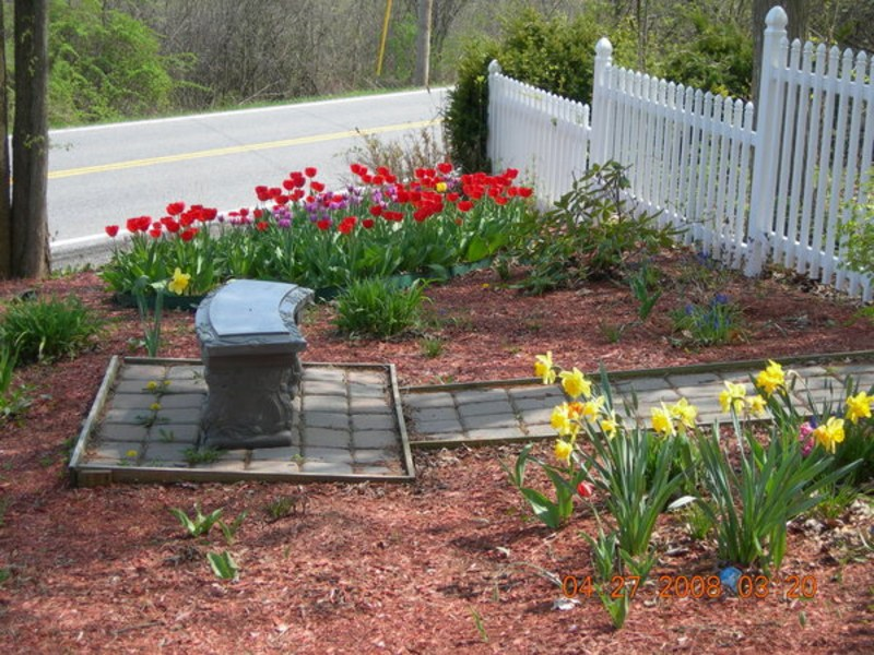 Easy Affordable Landscaping Ideas