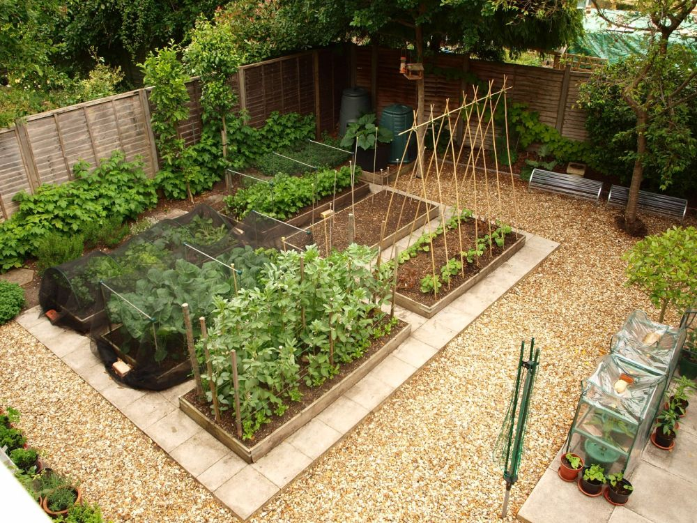 Easy Landscaping Ideas For Beginners