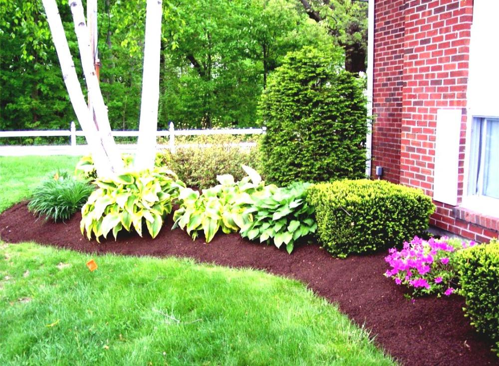 Easy Landscaping Ideas On A Budget