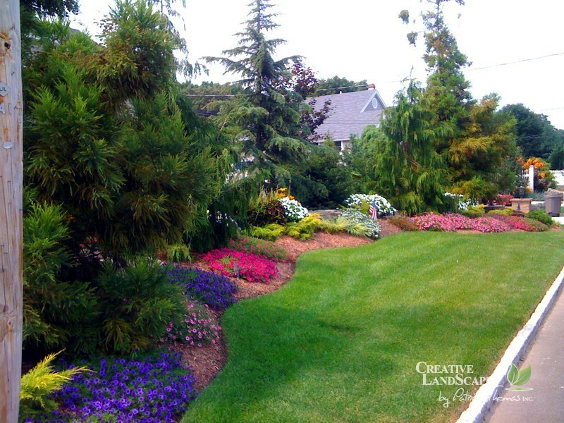 Evergreen Landscaping Images