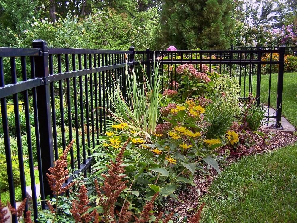 Evergreen Plants Landscaping Ideas