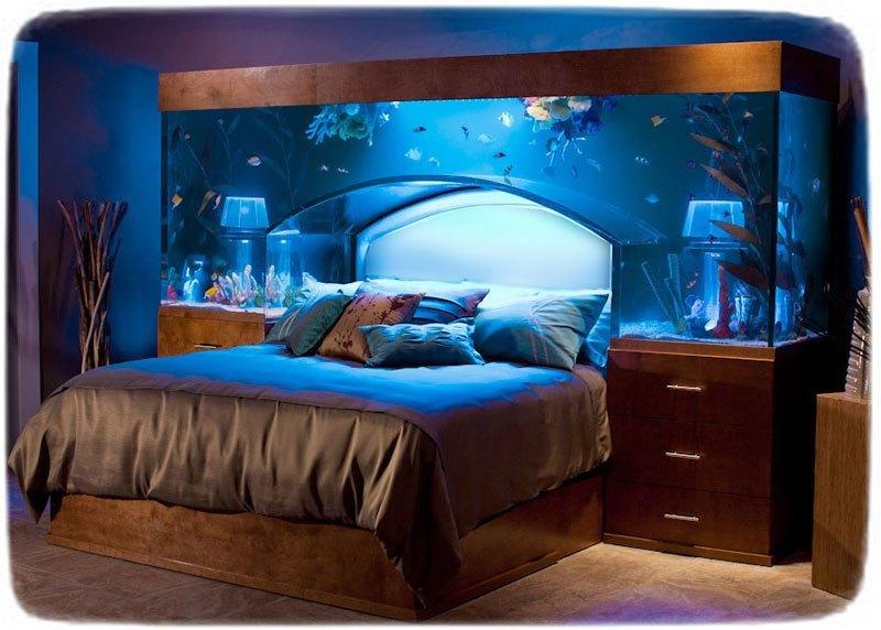 Fish Tank Bed Frame