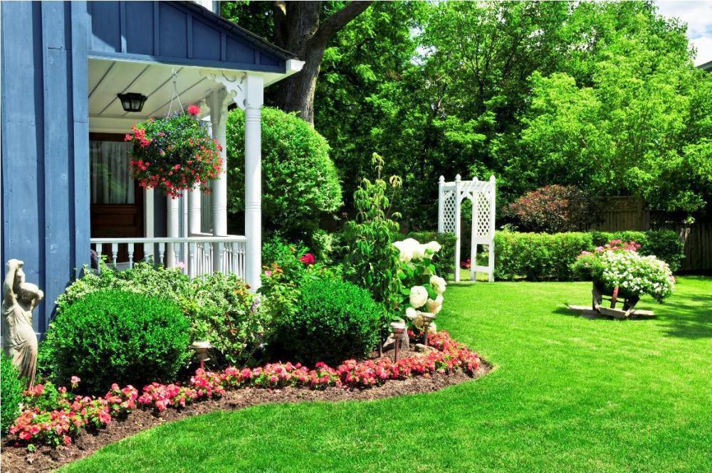 Florida Landscaping Ideas For Backyard