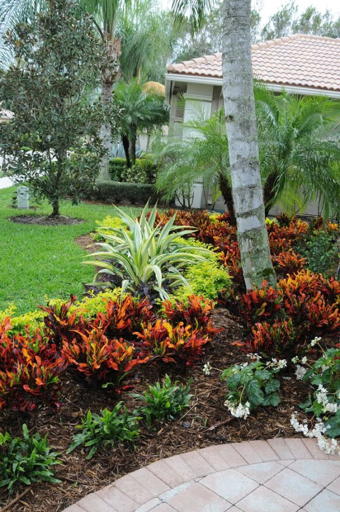 Florida Landscaping Ideas Pinterest